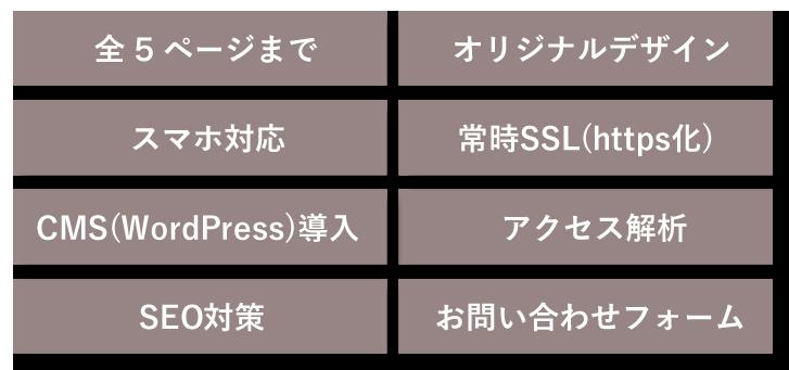 全5ページまで/オリジナルデザイン/スマホ対応/常時SSL(https化)/CMS(WordPress)導入/アクセス解析/SEO対策/お問い合わせフォーム