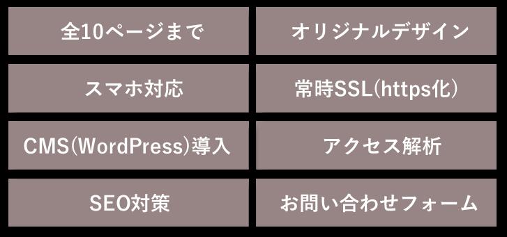 全10ページまで/オリジナルデザイン/スマホ対応/常時SSL(https化)/CMS(WordPress)導入/アクセス解析/SEO対策/お問い合わせフォーム